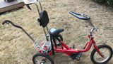Police looking for trike made for boy with autism