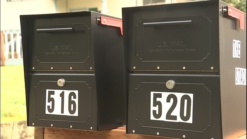 Thieves caught stealing mail, Lacey police say crime is on