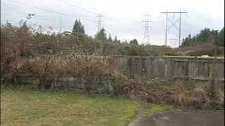 VIDEO: Snohomish woman says Seattle City Light is reclaiming huge portion of her backyard