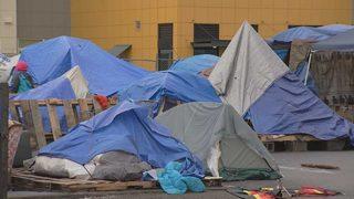 Food bank worries homeless camps keep hungry families away