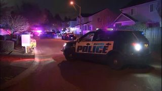 Carjacking leads to shootout in Burien neighborhood