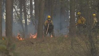 State unveils plan to better prevent and respond to wildfires