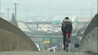 VIDEO: Changes commuters made after Viaduct closure could be new normal