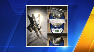 K9 helps officers seize meth and heroin from vehicle in Arlington