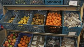 Snoqualmie Valley Food Bank reopens after severe snowfall in North Bend