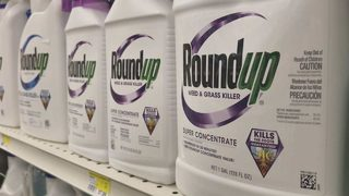 Duvall landscaper claims Roundup caused his cancer