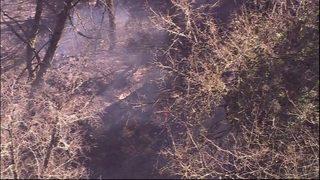 PHOTOS: Crews contain small brush fire in SeaTac
