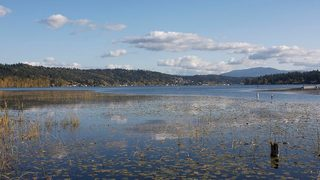 Wastewater spills into Lake Sammamish over weekend