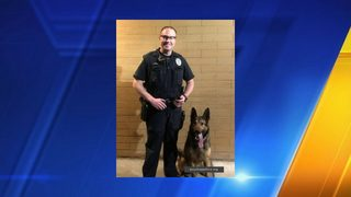 New narcotics detection K-9 joins Puyallup Police Department