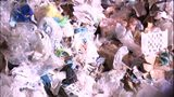 VIDEO: The recycling crisis is serious, but you can help