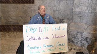 71-year-old goes on 17-day hunger strike to save starving orcas