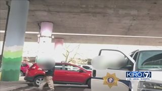Criminals dropped off under Seattle overpass