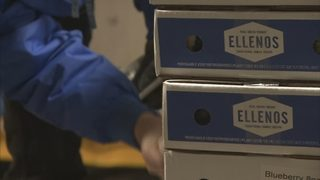 Ellenos Yogurt says being displaced by Sound Transit could be
