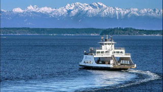 Line cutters for Anderson Island ferry to be fined