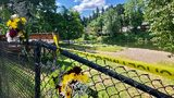 Bouquets of flowers sit on a fence on Wednesday, June 26, 2019, that was knocked down when a driver crashed into a swimming hole in Washougal, Wash. (AP Photo/Gillian Flaccus)