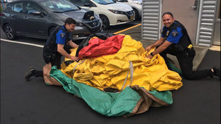 Inflatable duck stolen from Silverdale auto dealership recovered
