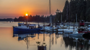 The Lakebay Marina and Cafe has reopened as the only public marina on the Key Peninsula. A red sunrise could be seen over Mayo Cove Wednesday, Aug. 8, 2018. (David Montesino, The News Tribune)