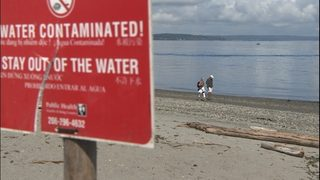 3 popular beaches expected to open after earlier sewage spill