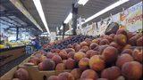 VIDEO: Landmark fruit market could be removed for Sound Transit bus lanes