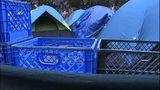 VIDEO: Homeless encampment pops up in Seattle neighborhood