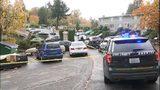 VIDEO: Breaking news coverage of shooting in Skyway
