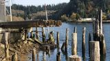 VIDEO: 'Boat junkyard' becomes Hoquiam eyesore, state steps in